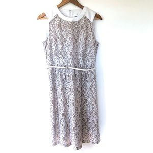 Calvin Klein Lace Cocktail Dress With Belt White